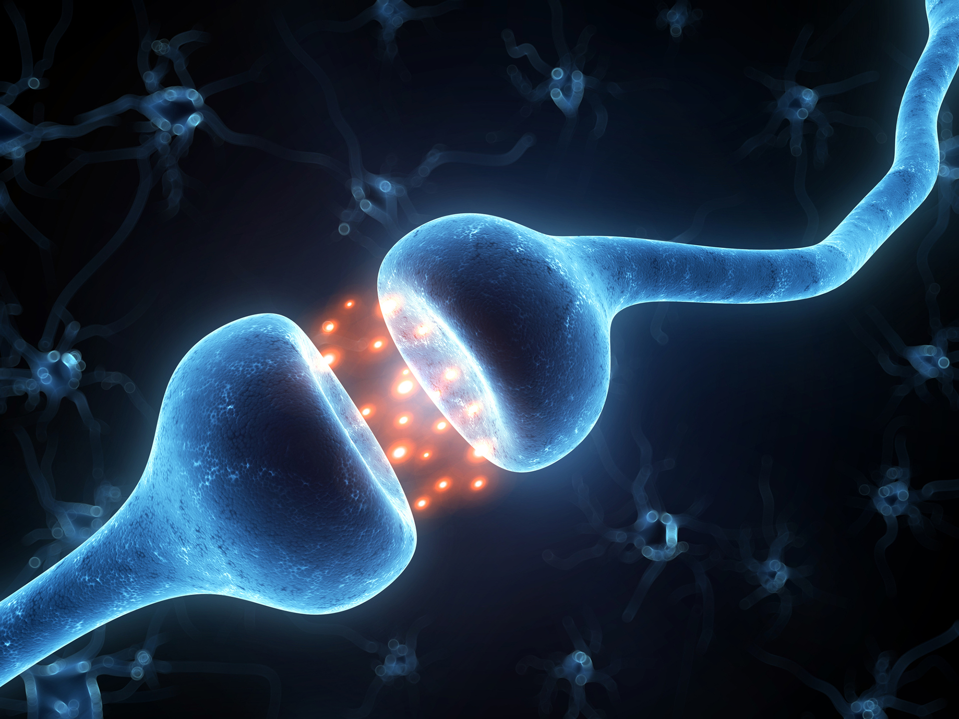 3d rendered illustration of an active neurons - how CBD affects the body